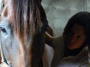 Amélie Gardelle traitant un cheval